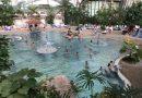 Tropical Island – Pomysł na rodzinny weekend pełen atrakcji z małymi dziećmi 2 i 4 latkiem